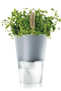Eva Solo Self Watering Herb/Flowerpot (chalk white)